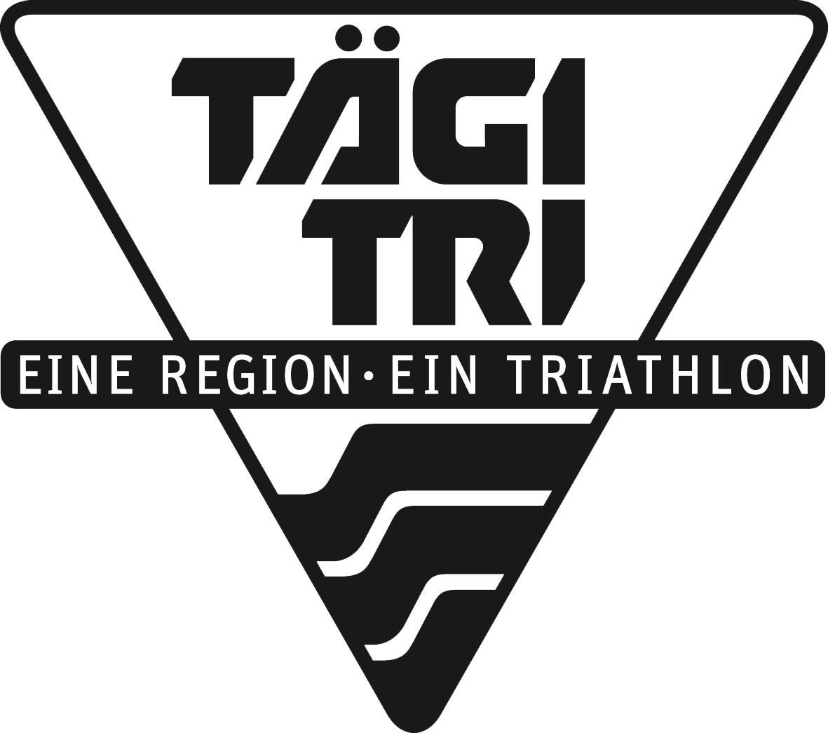 logo_taegi-tri